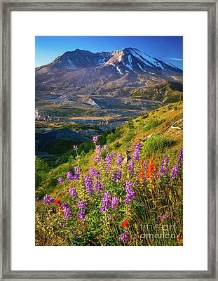 Mount Saint Helens Caldera Framed Print