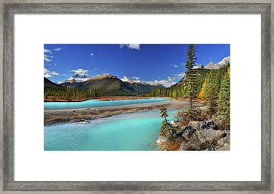 Framed Print featuring the photograph Mount Saskatchewan by John Poon