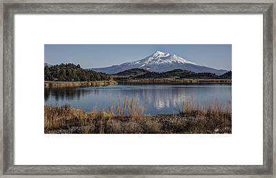 Mount Shasta And Trout Lake Framed Print by Loree Johnson