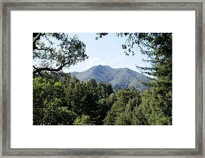 Mount Tamalpais From King Street 2 Framed Print by Ben Upham III