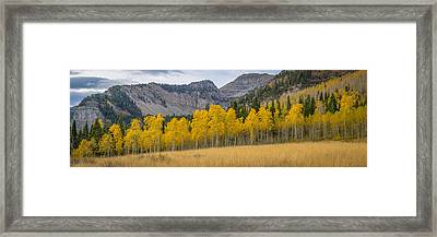 Mount Timpanogos Meadow In Fall Framed Print