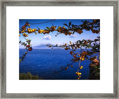 Mount Vesuvius From Sorrento Framed Print