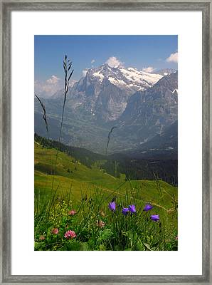 Mount Wetterhorn And The Grindelwald Framed Print