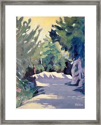 Mount Wilson Trail Framed Print by Richard  Willson