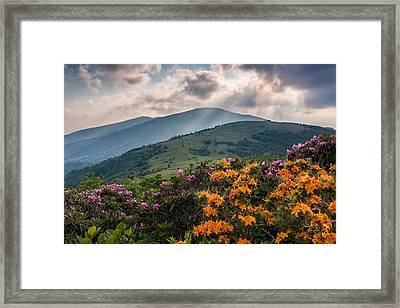 Mountain Aflame Framed Print by Rob Travis