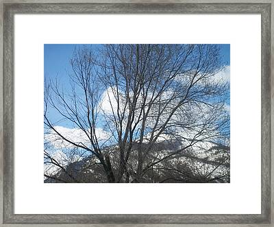 Mountain Backdrop Framed Print by Jewel Hengen