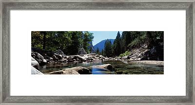 Mountain Behind Pine Trees, Tenaya Framed Print