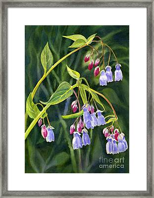 Mountain Bluebells With Background Framed Print by Sharon Freeman