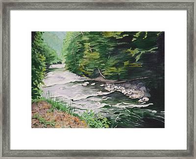 Mountain Creek Framed Print by Christopher Reid