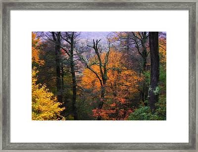 Framed Print featuring the photograph Mountain Fall Colors by Ken Barrett