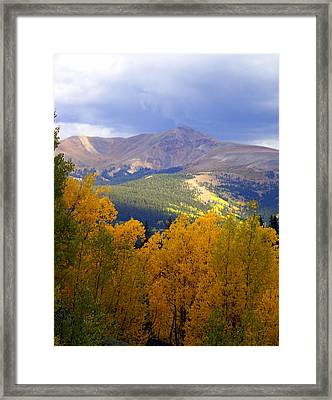 Mountain Fall Framed Print by Marty Koch