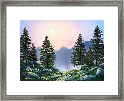 Mountain Firs Framed Print by Frank Wilson