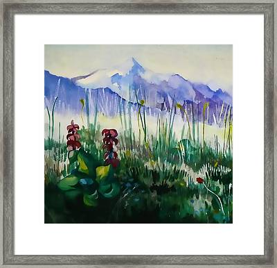 Mountain Flowers Framed Print by Anastasia Michaels