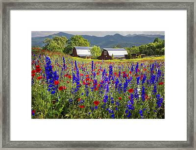 Mountain Flowers Framed Print