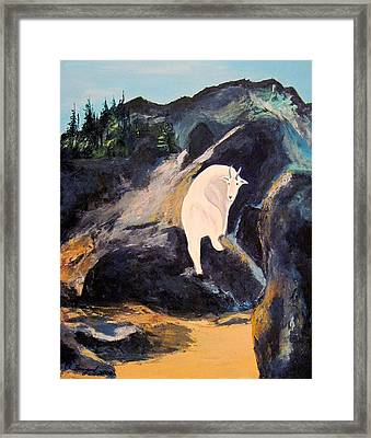 Mountain Goat Framed Print by Richard Beauregard