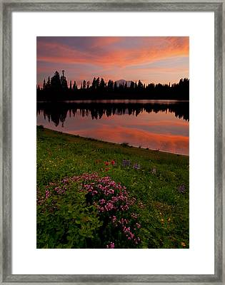 Mountain Heather Reflections Framed Print