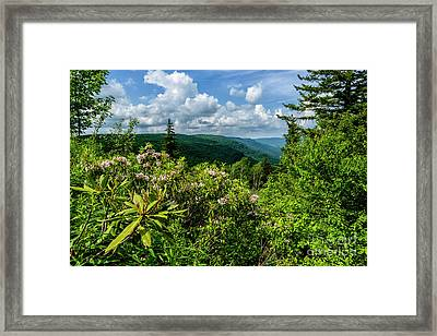 Framed Print featuring the photograph Mountain Laurel And Ridges by Thomas R Fletcher