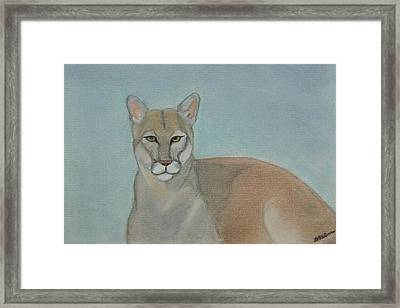 Mountain Lion - Pastels - Color - 8x12 Framed Print by B Nelson