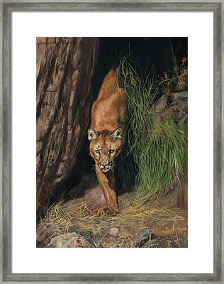 Framed Print featuring the painting Mountain Lion Emerging From Shadows by David Stribbling