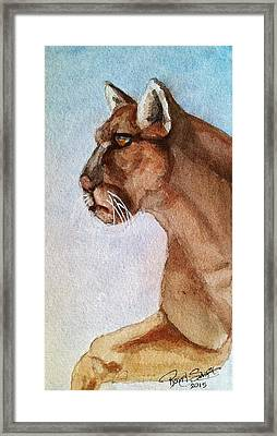 Mountain Lion Framed Print