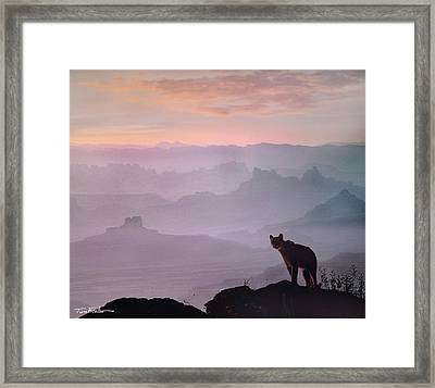 Mountain Lion Framed Print by Tim Fitzharris