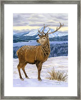Mountain Majesty Framed Print by Sarah Batalka