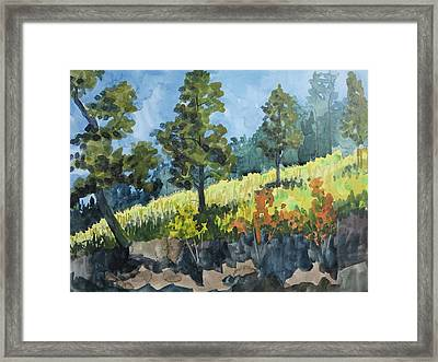 Mountain Meadow Framed Print by Bethany Lee