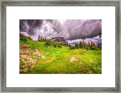 Mountain Meadow Framed Print by Spencer McDonald