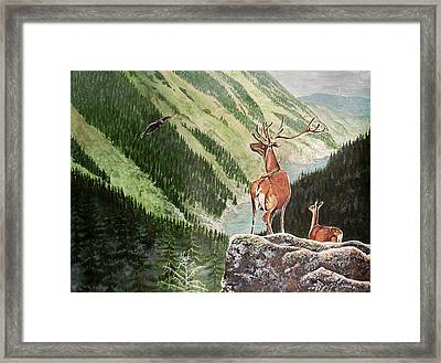 Mountain Morning Framed Print
