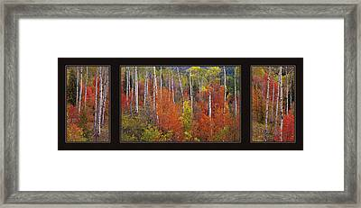 Mountain Of Color Framed Print by Leland D Howard