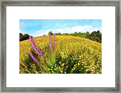 Framed Print featuring the painting Mountain Of Summer Flowers In The Blue Ridge Ap by Dan Carmichael