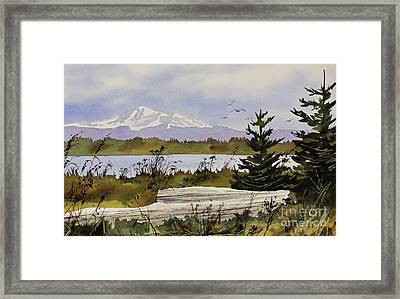 Mountain Outlook Framed Print by James Williamson