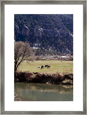 Framed Print featuring the photograph Mountain Pasture Vertical by Lorraine Devon Wilke