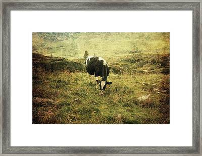 Mountain Pastures  Framed Print by Vittorio Chiampan
