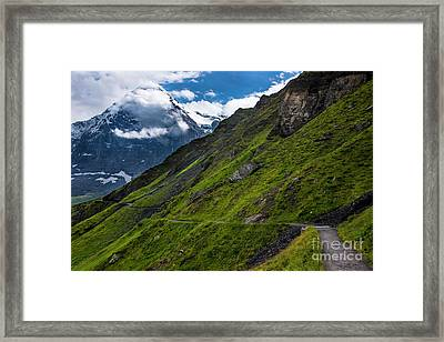 Mountain Path In The Swiss Alps Framed Print by Gary Whitton