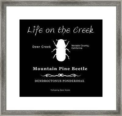 Mountain Pine Beetle White On Black Framed Print
