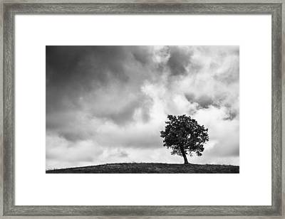 Tree On Hill - Doughton Park Blue Ridge Parkway Framed Print