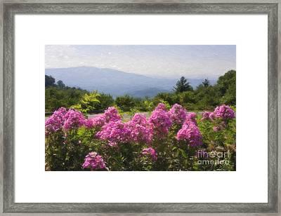 Mountain Scene Framed Print