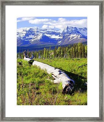 Mountain Splendor Framed Print by Marty Koch