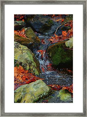 Mountain Spring On The At Framed Print by Raymond Salani III