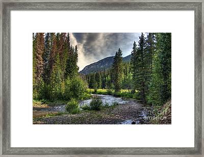 Mountain Stream 4 Framed Print