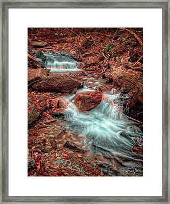 Mountain Stream And Leaves Framed Print