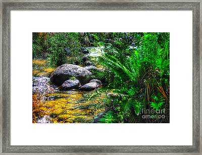 Mountain Stream Framed Print by Blair Stuart