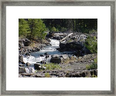 Mountain Stream Framed Print by Dave Clark