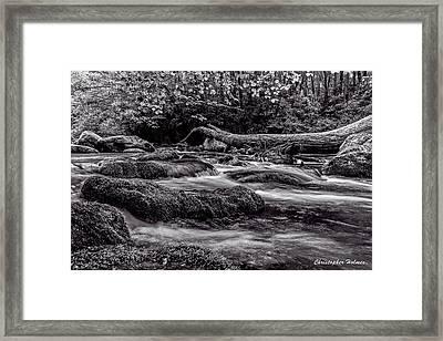 Mountain Stream II Bw Framed Print