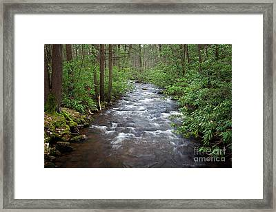 Framed Print featuring the photograph Mountain Stream Laurel by John Stephens