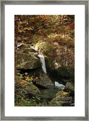 Mountain Stream Framed Print