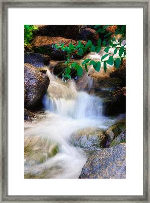 Mountain Stream Wasatch Mts. Utah Framed Print