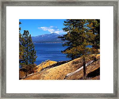 Mountain Thru The Pines Framed Print