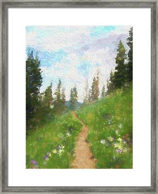 Mountain Trail Framed Print